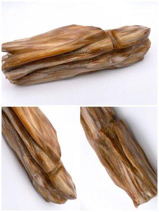 Fosilné drevo